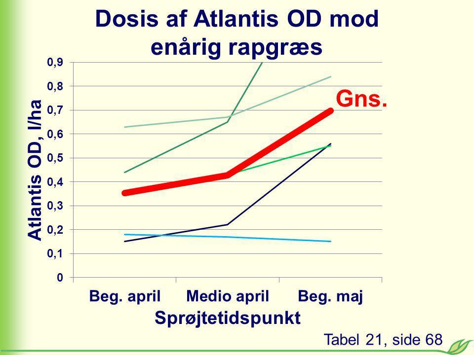 Dosis af Atlantis OD mod enårig rapgræs Tabel 21, side 68 Gns.