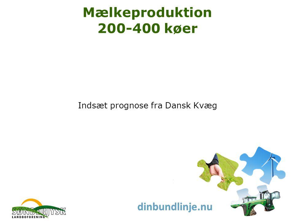 www.slf.dk dinbundlinje.nu Mælkeproduktion 200-400 køer Indsæt prognose fra Dansk Kvæg