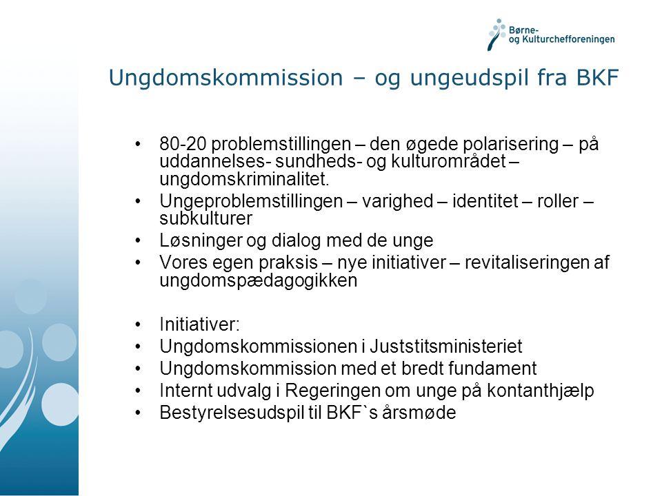 Ungdomskommission – og ungeudspil fra BKF 80-20 problemstillingen – den øgede polarisering – på uddannelses- sundheds- og kulturområdet – ungdomskriminalitet.