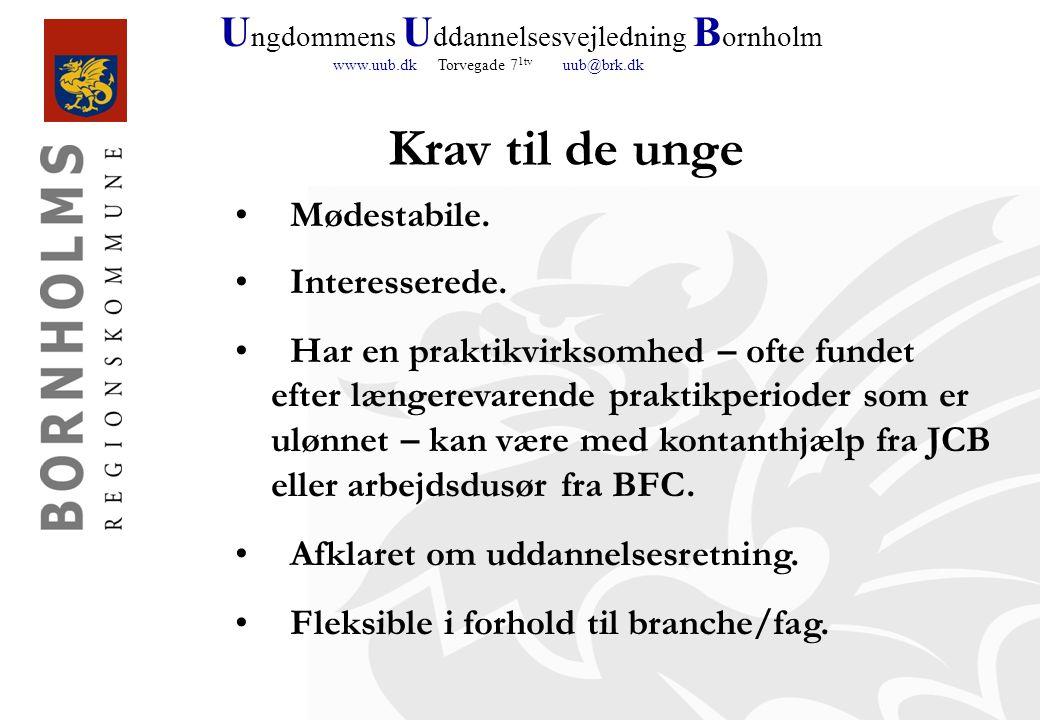 U ngdommens U ddannelsesvejledning B ornholm www.uub.dk Torvegade 7 1tv uub@brk.dk Krav til de unge Mødestabile.