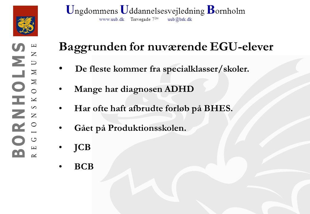 U ngdommens U ddannelsesvejledning B ornholm www.uub.dk Torvegade 7 1tv uub@brk.dk De fleste kommer fra specialklasser/skoler.