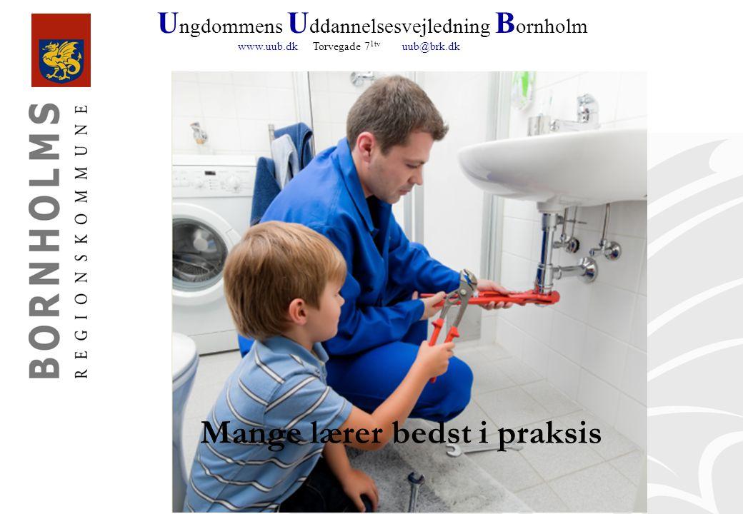 U ngdommens U ddannelsesvejledning B ornholm www.uub.dk Torvegade 7 1tv uub@brk.dk Mange lærer bedst i praksis