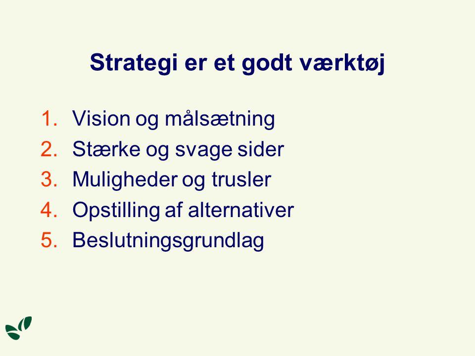 Strategi er et godt værktøj 1.Vision og målsætning 2.Stærke og svage sider 3.Muligheder og trusler 4.Opstilling af alternativer 5.Beslutningsgrundlag