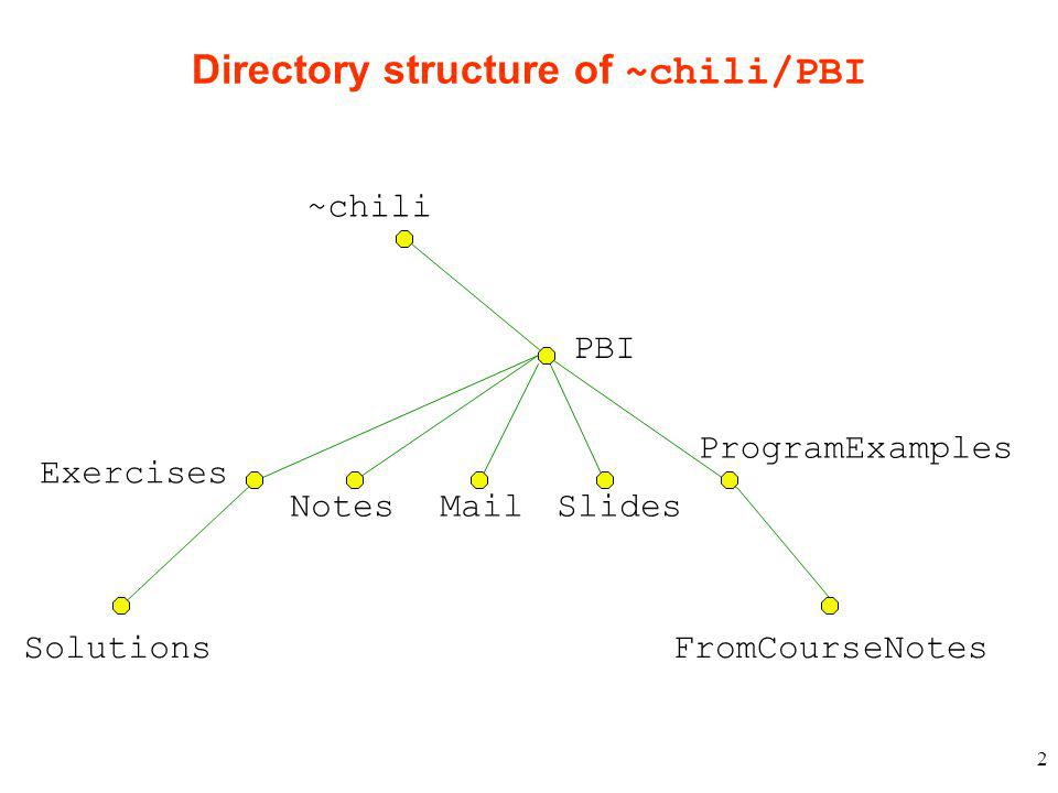 2 Directory structure of ~chili/PBI ~chili PBI ProgramExamples Exercises Mail FromCourseNotesSolutions SlidesNotes