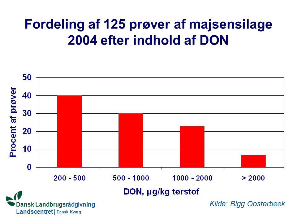 Dansk Landbrugsrådgivning Landscentret | Dansk Kvæg Fordeling af 125 prøver af majsensilage 2004 efter indhold af DON Kilde: Blgg Oosterbeek