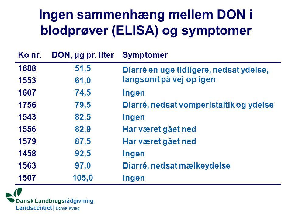 Dansk Landbrugsrådgivning Landscentret | Dansk Kvæg Ingen sammenhæng mellem DON i blodprøver (ELISA) og symptomer Ko nr.DON, μg pr.