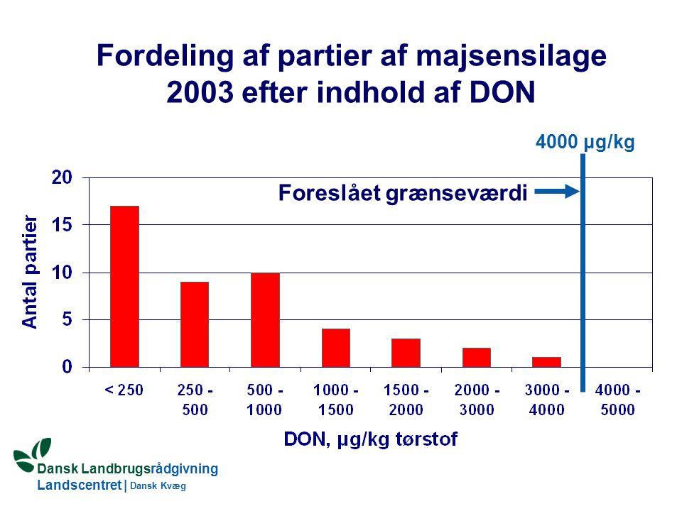 Dansk Landbrugsrådgivning Landscentret | Dansk Kvæg Fordeling af partier af majsensilage 2003 efter indhold af DON Foreslået grænseværdi 4000 μg/kg