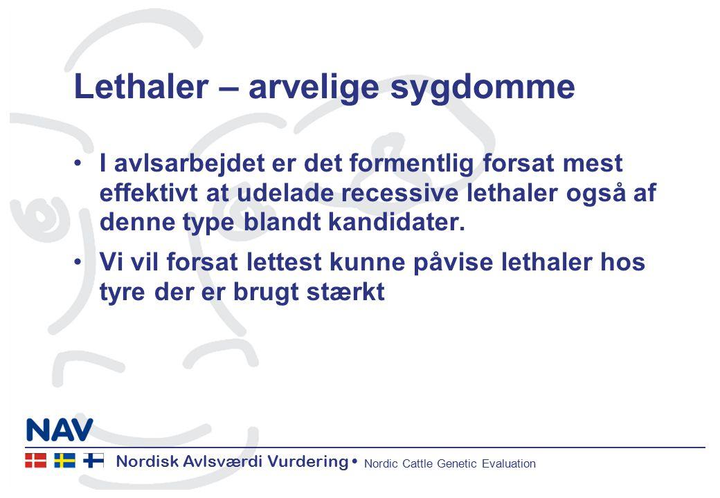 Nordisk Avlsværdi Vurdering Nordic Cattle Genetic Evaluation Lethaler – arvelige sygdomme I avlsarbejdet er det formentlig forsat mest effektivt at udelade recessive lethaler også af denne type blandt kandidater.