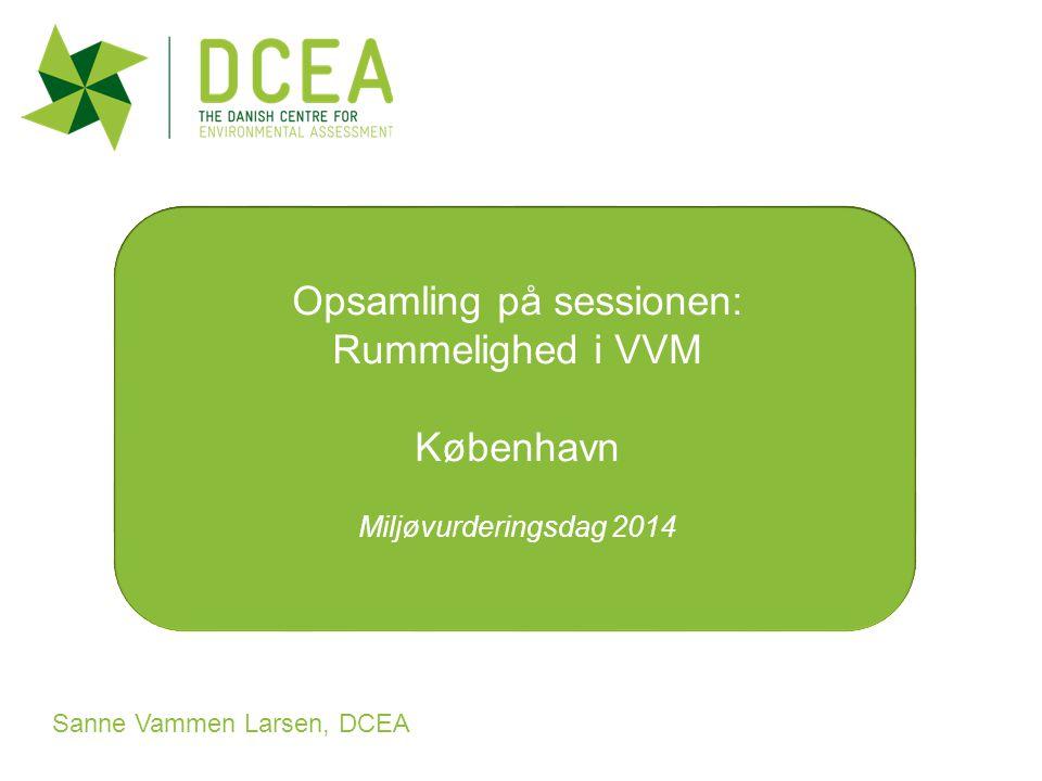 Sustainability for Design: Lecture 7 Spring 2011 Sanne Vammen Larsen, DCEA Opsamling på sessionen: Rummelighed i VVM København Miljøvurderingsdag 2014