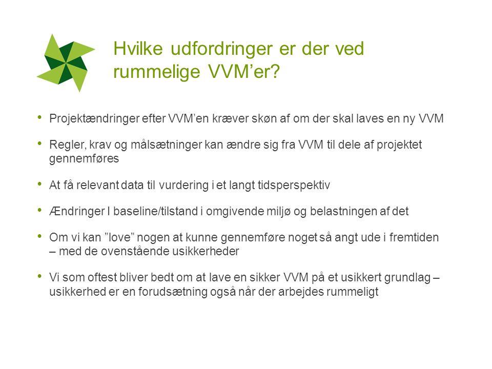Hvilke udfordringer er der ved rummelige VVM'er.