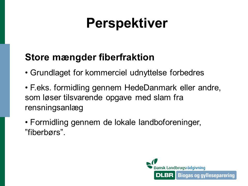 Perspektiver Store mængder fiberfraktion Grundlaget for kommerciel udnyttelse forbedres F.eks.