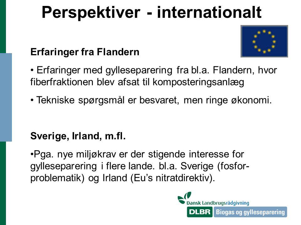 Perspektiver - internationalt Erfaringer fra Flandern Erfaringer med gylleseparering fra bl.a.