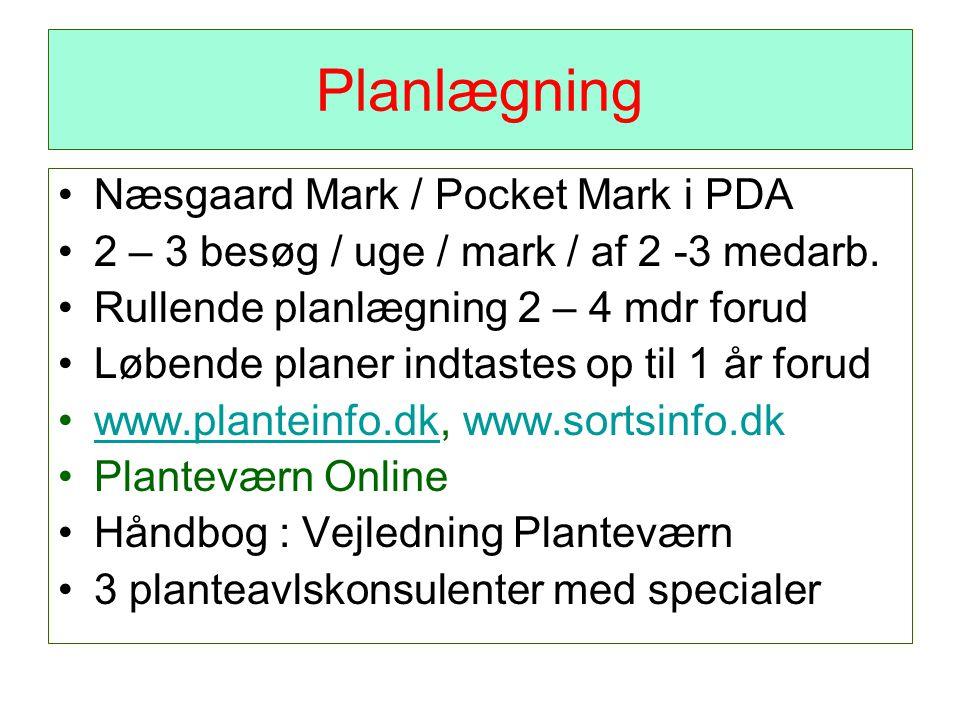 Planlægning Næsgaard Mark / Pocket Mark i PDA 2 – 3 besøg / uge / mark / af 2 -3 medarb.