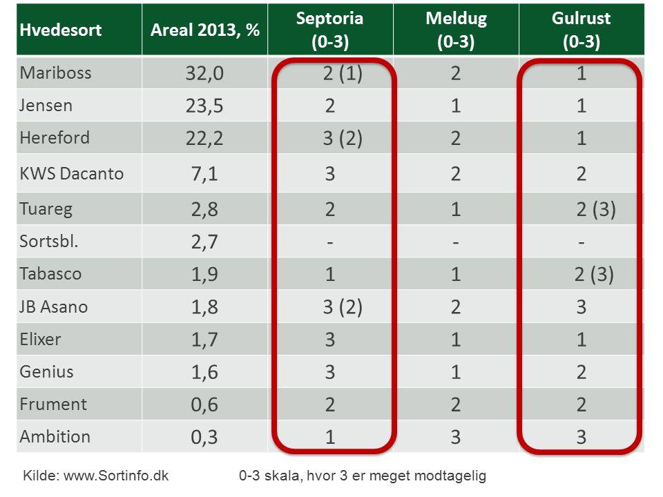 HvedesortAreal 2013, % Septoria (0-3) Meldug (0-3) Gulrust (0-3) Mariboss 32,0 2 (1)21 Jensen 23,5211 Hereford 22,2 3 (2)21 KWS Dacanto 7,1322 Tuareg 2,821 2 (3) Sortsbl.