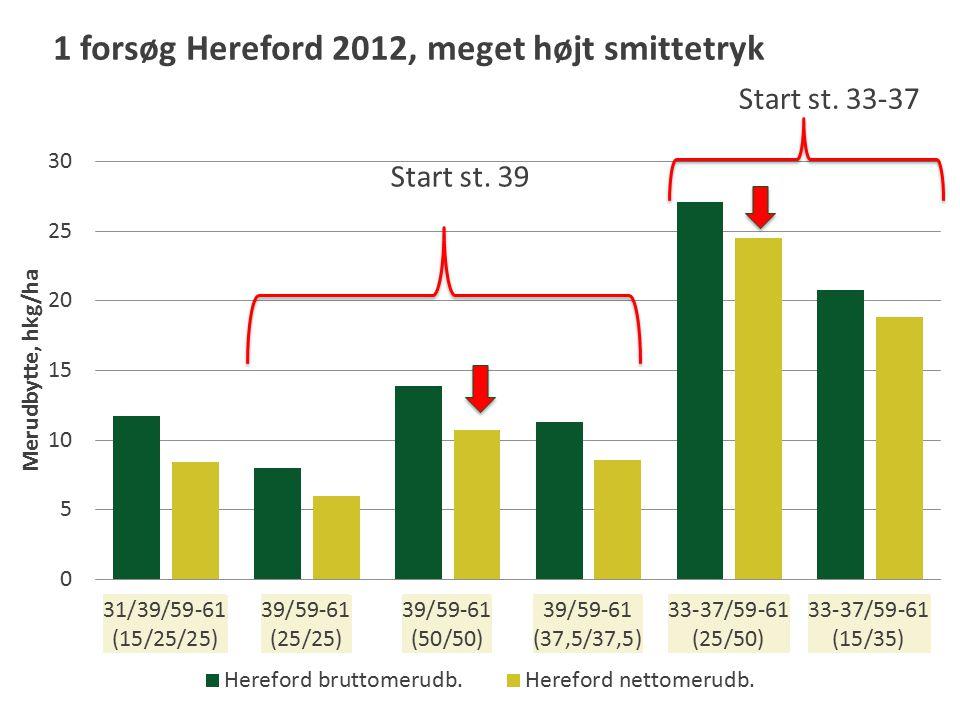 Start st. 39 Start st. 33-37 1 forsøg Hereford 2012, meget højt smittetryk