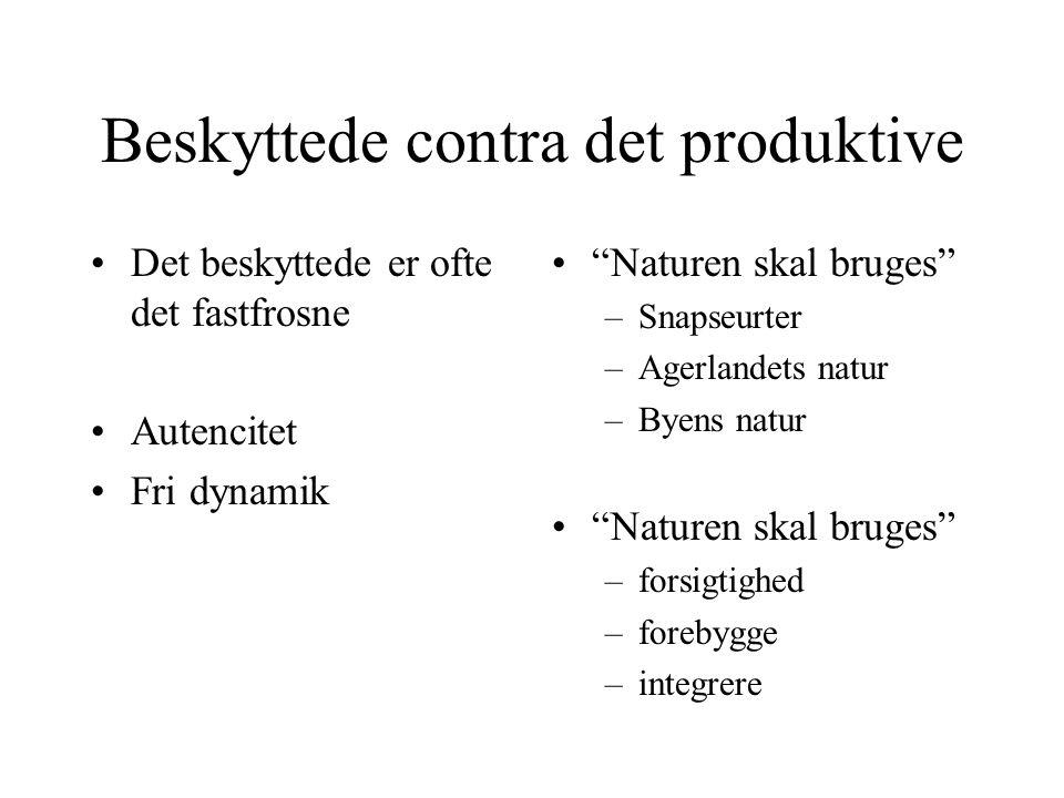 Beskyttede contra det produktive Det beskyttede er ofte det fastfrosne Autencitet Fri dynamik Naturen skal bruges –Snapseurter –Agerlandets natur –Byens natur Naturen skal bruges –forsigtighed –forebygge –integrere