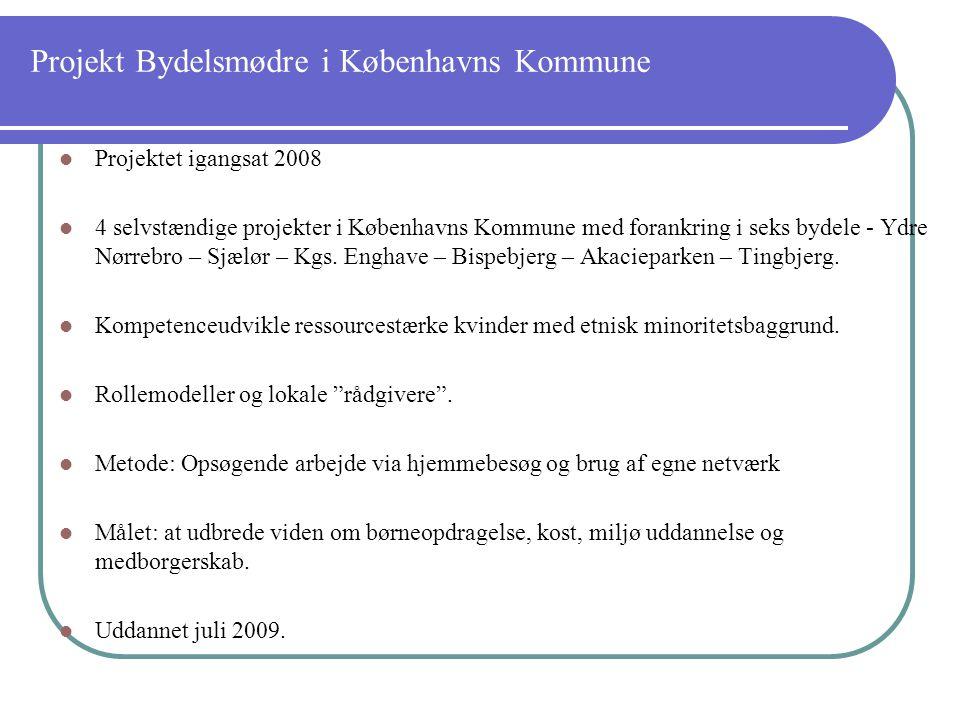 Projekt Bydelsmødre i Københavns Kommune Projektet igangsat 2008 4 selvstændige projekter i Københavns Kommune med forankring i seks bydele - Ydre Nørrebro – Sjælør – Kgs.