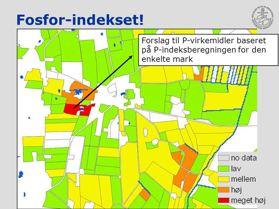 Fosfor-indekset! Forslag til P-virkemidler baseret på P-indeksberegningen for den enkelte mark