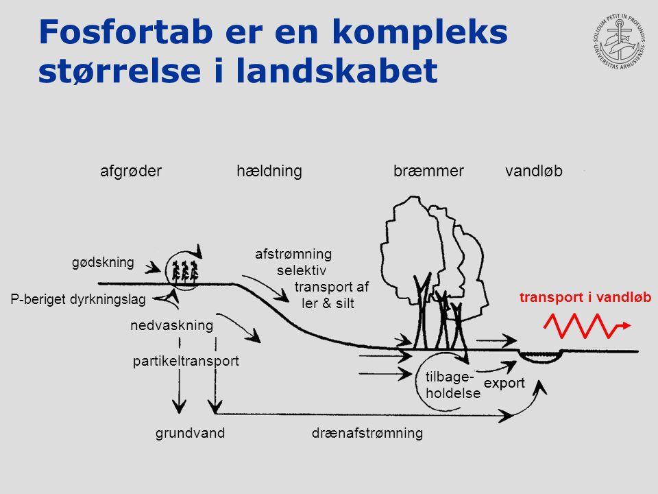 Fosfortab er en kompleks størrelse i landskabet export nedvaskning grundvanddrænafstrømning tilbage- holdelse afstrømning selektiv transport af ler & silt partikeltransport afgrøderhældning bræmmervandløb gødskning P-beriget dyrkningslag transport i vandløb