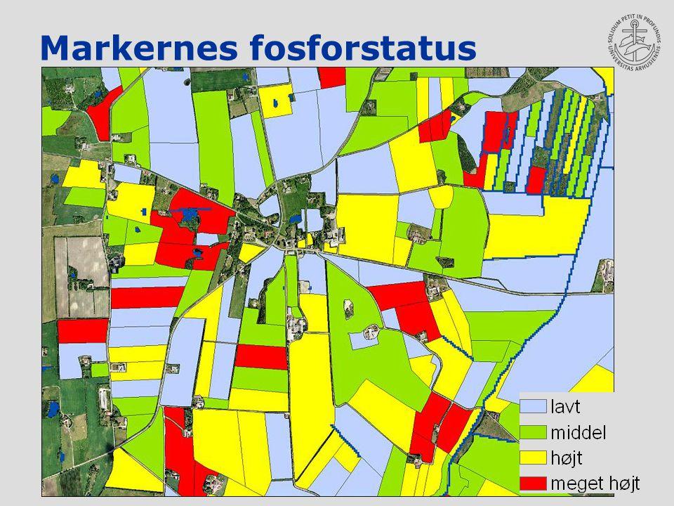 Markernes fosforstatus