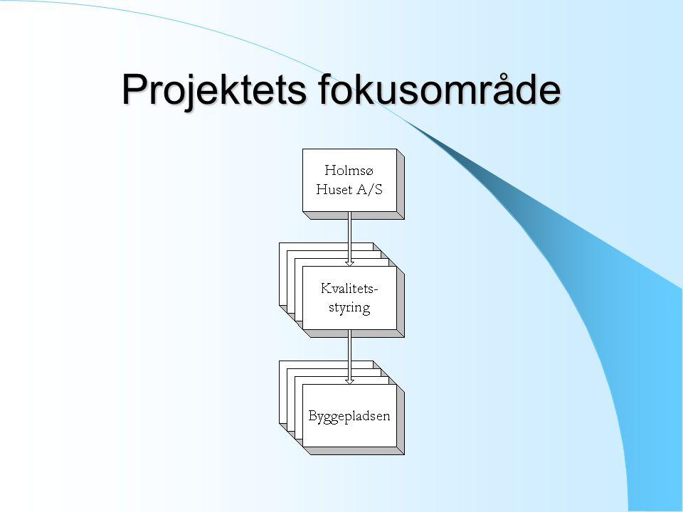 Projektets fokusområde