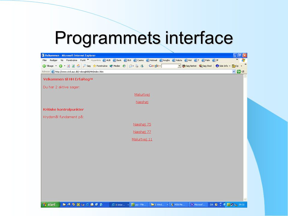Programmets interface