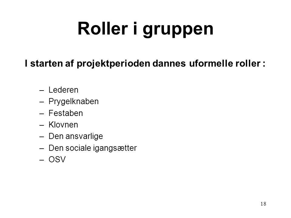 18 Roller i gruppen I starten af projektperioden dannes uformelle roller : –Lederen –Prygelknaben –Festaben –Klovnen –Den ansvarlige –Den sociale igan