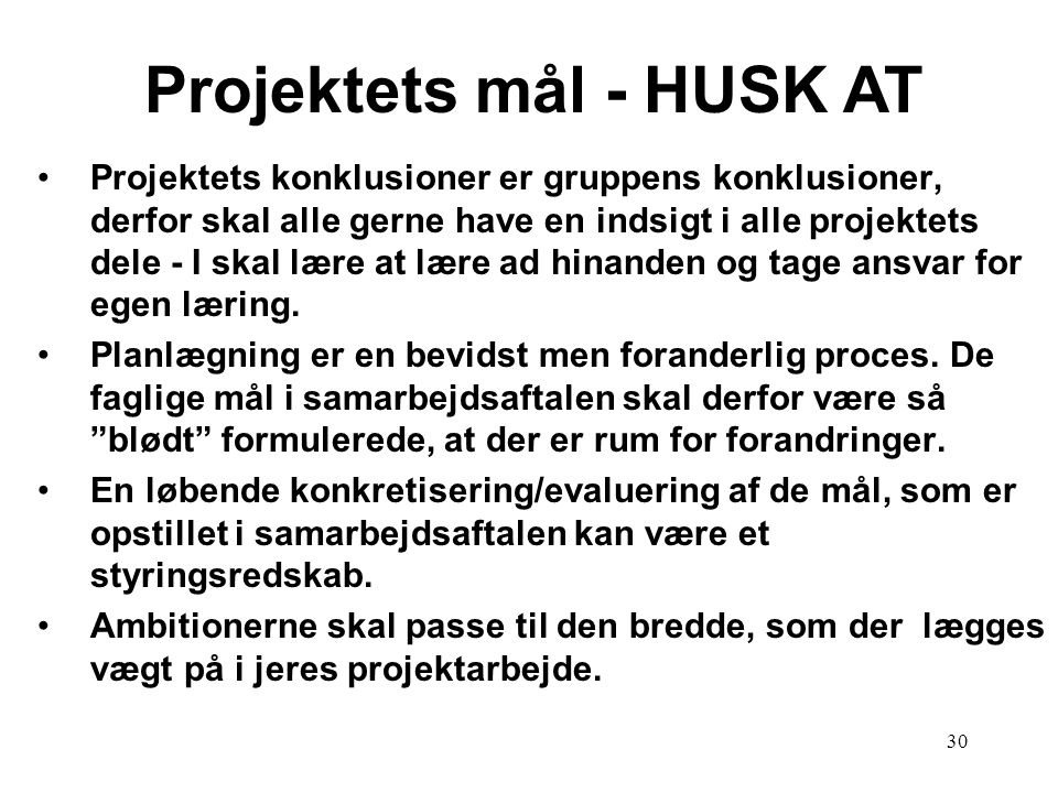 30 Projektets mål - HUSK AT Projektets konklusioner er gruppens konklusioner, derfor skal alle gerne have en indsigt i alle projektets dele - I skal l