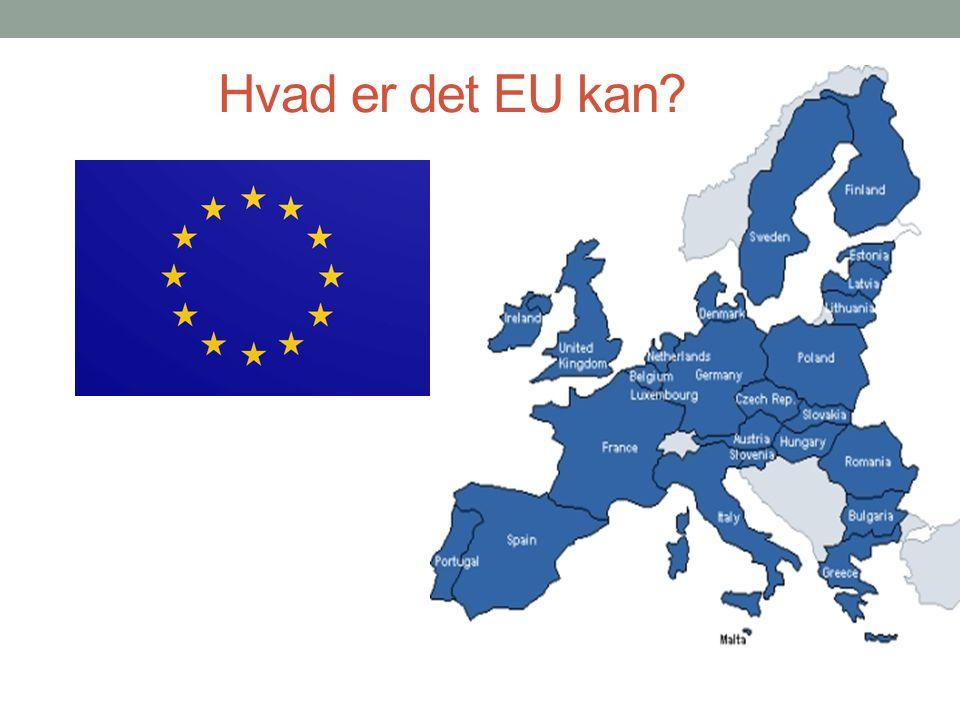 Hvad er det EU kan