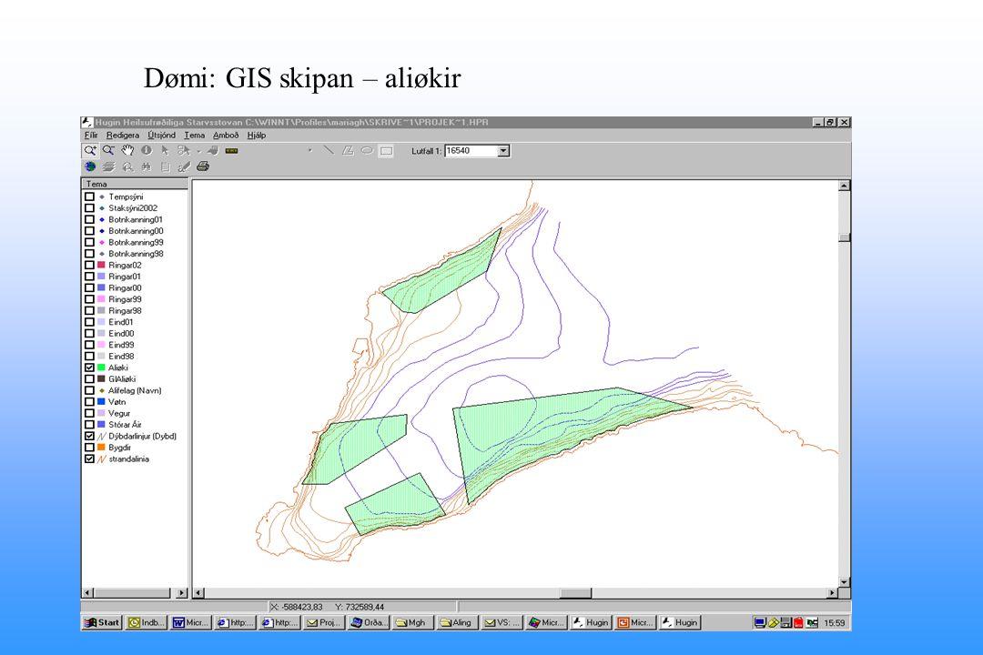 Dømi: GIS skipan – aliøkir