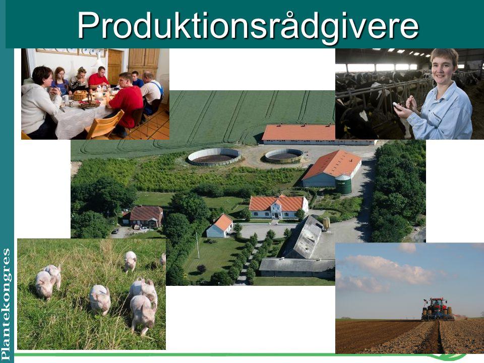 Produktionsrådgivere
