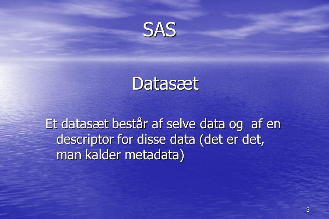 3SASDatasæt Et datasæt består af selve data og af en descriptor for disse data (det er det, man kalder metadata)