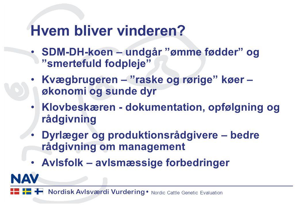 Nordisk Avlsværdi Vurdering Nordic Cattle Genetic Evaluation Hvem bliver vinderen.
