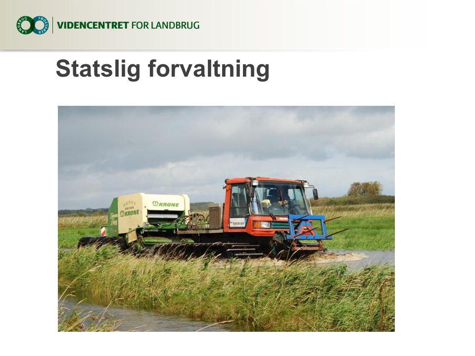 Statslig forvaltning