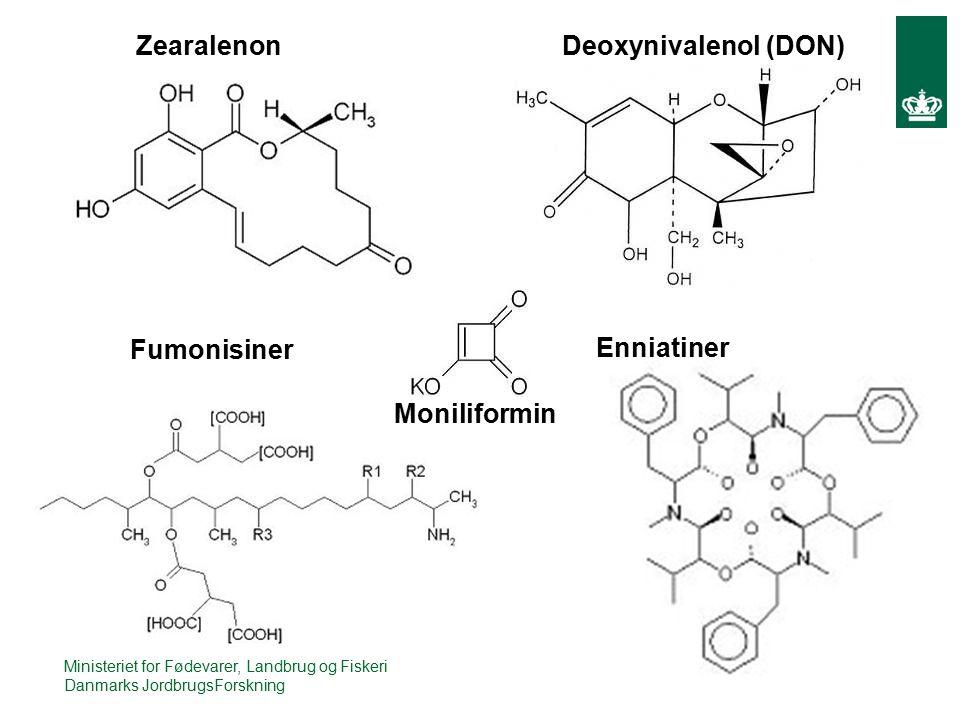 Zearalenon Moniliformin Deoxynivalenol (DON) Fumonisiner Enniatiner Ministeriet for Fødevarer, Landbrug og Fiskeri Danmarks JordbrugsForskning
