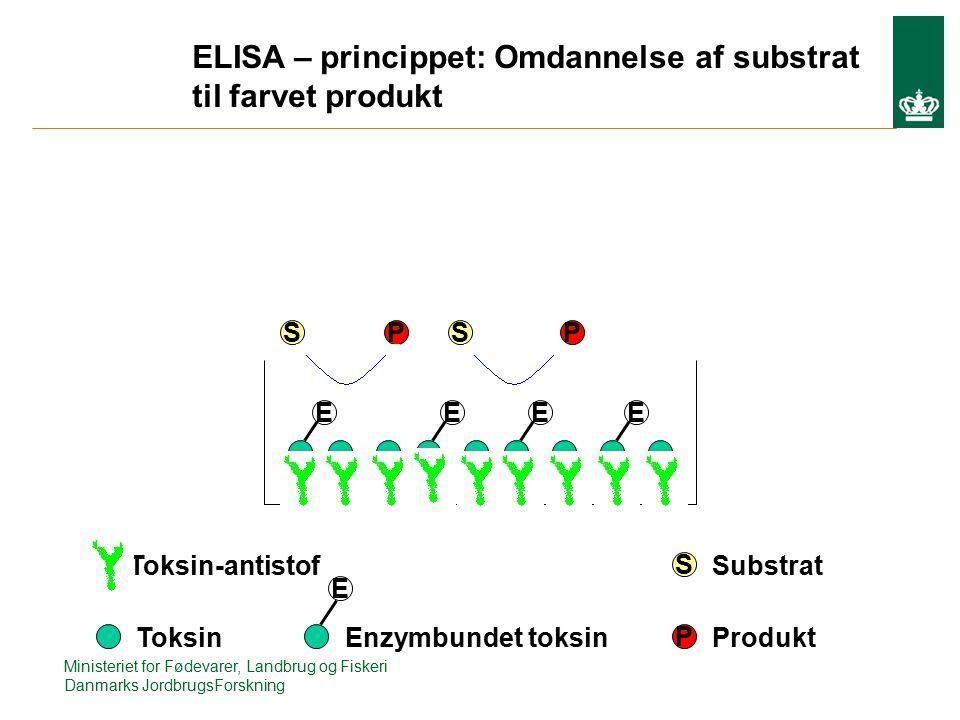 EEEE PSSP E S P ELISA – princippet: Omdannelse af substrat til farvet produkt Toksin-antistof ToksinEnzymbundet toksin Substrat Produkt Ministeriet for Fødevarer, Landbrug og Fiskeri Danmarks JordbrugsForskning