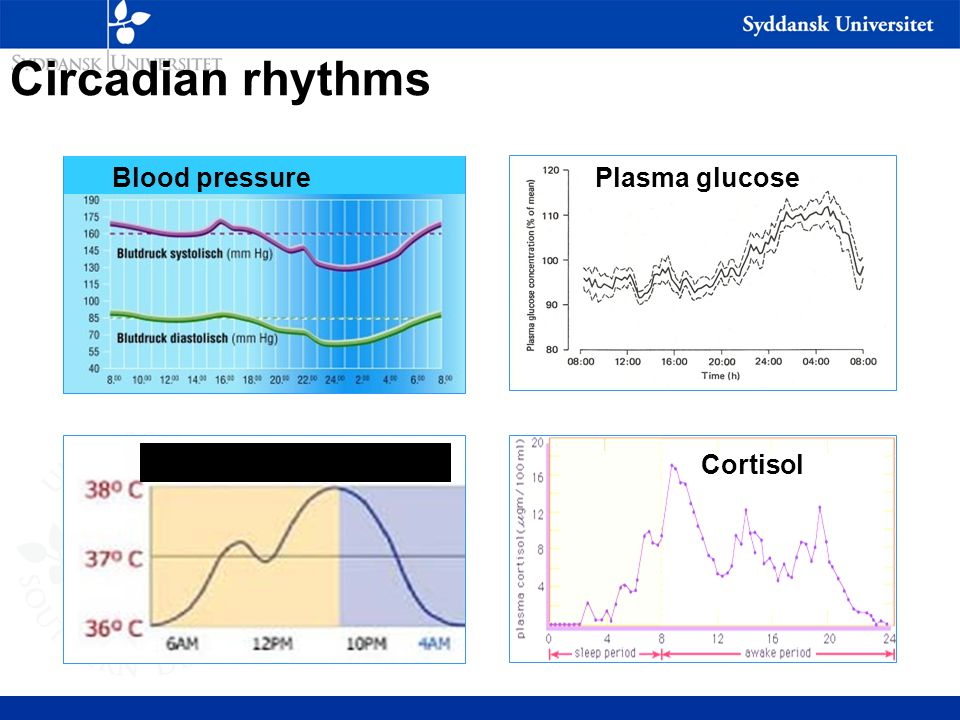 Circadian rhythms Plasma glucose Cortisol Temperature Blood pressure