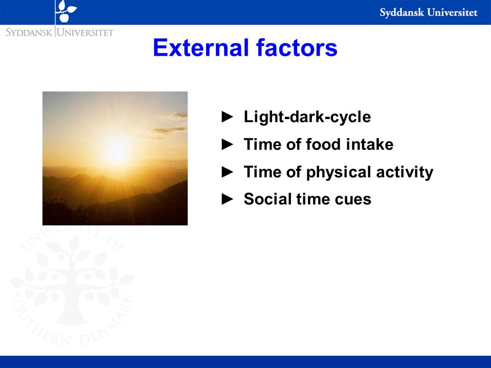 External factors ►Light-dark-cycle ►Time of food intake ►Time of physical activity ►Social time cues