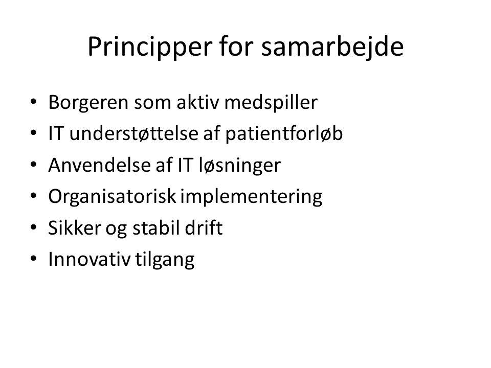 Principper for samarbejde Borgeren som aktiv medspiller IT understøttelse af patientforløb Anvendelse af IT løsninger Organisatorisk implementering Sikker og stabil drift Innovativ tilgang