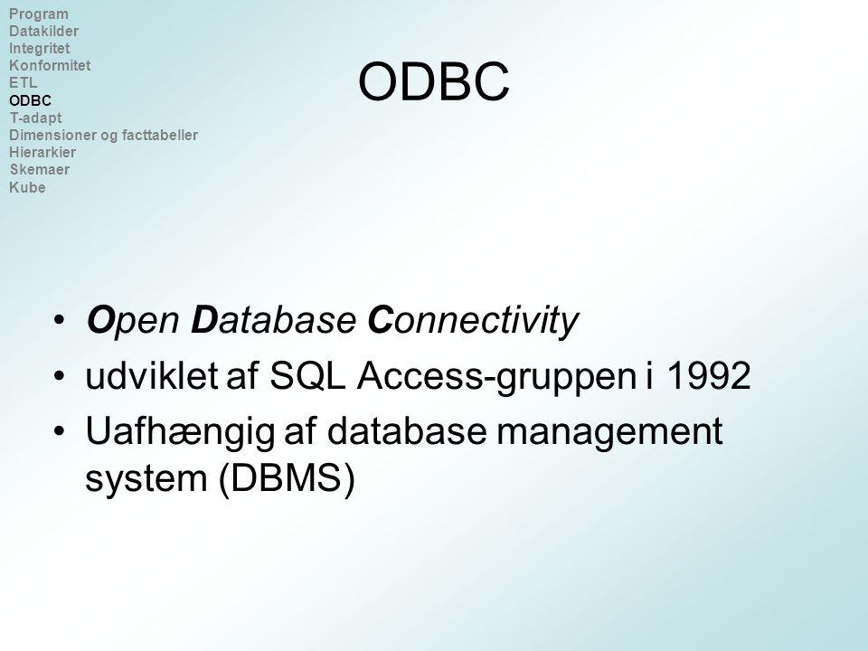 ODBC Open Database Connectivity udviklet af SQL Access-gruppen i 1992 Uafhængig af database management system (DBMS) Program Datakilder Integritet Konformitet ETL ODBC T-adapt Dimensioner og facttabeller Hierarkier Skemaer Kube