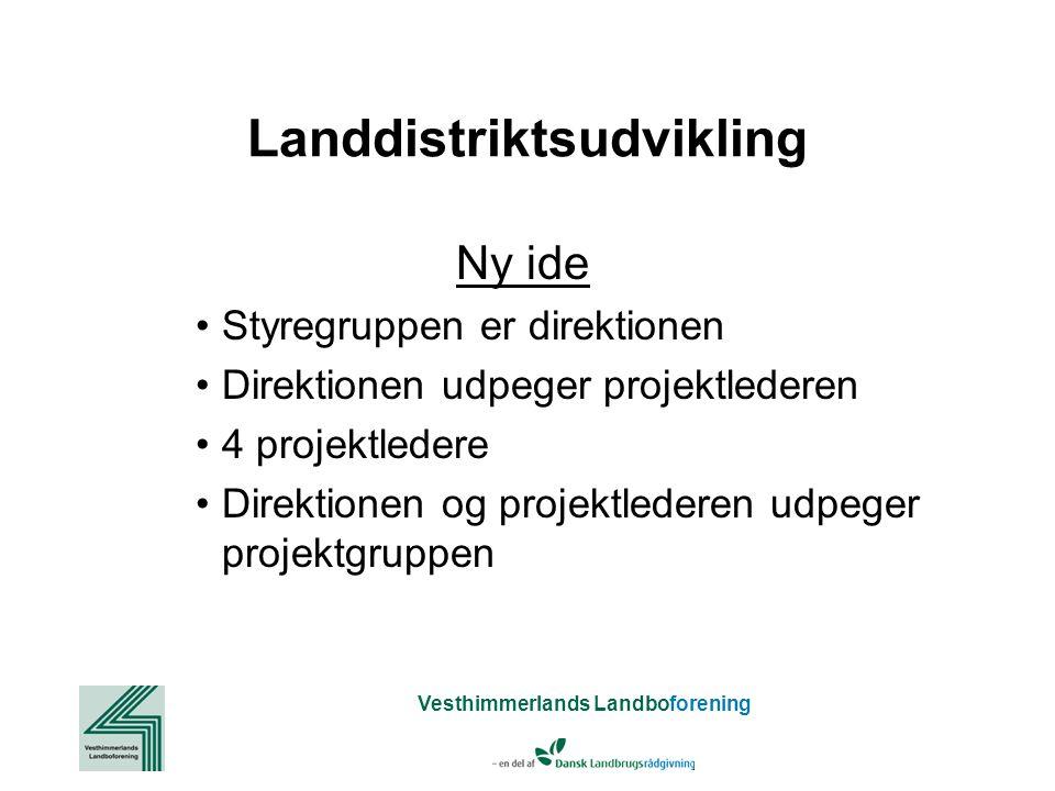 Vesthimmerlands Landboforening Landdistriktsudvikling Ny ide Styregruppen er direktionen Direktionen udpeger projektlederen 4 projektledere Direktionen og projektlederen udpeger projektgruppen