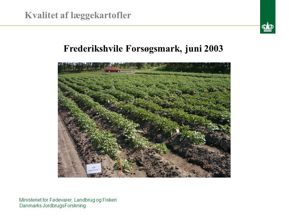 Ministeriet for Fødevarer, Landbrug og Fiskeri Danmarks JordbrugsForskning Frederikshvile Forsøgsmark, juni 2003 Kvalitet af læggekartofler
