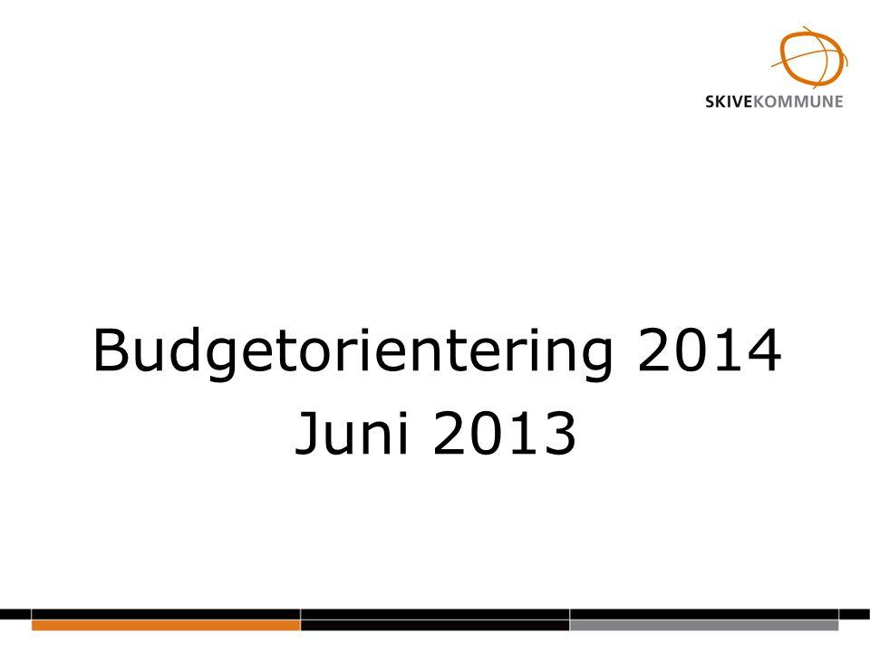 Budgetorientering 2014 Juni 2013