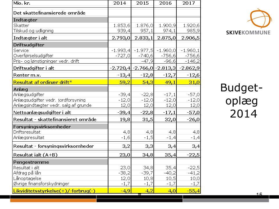 #15 Budget- oplæg 2014