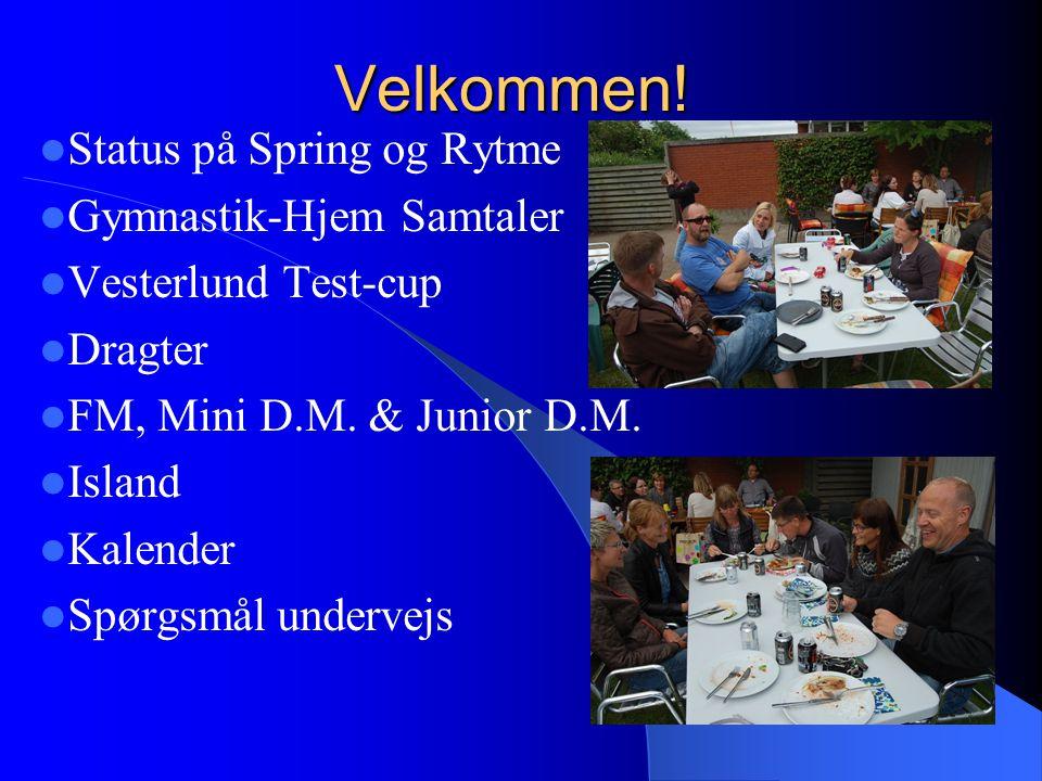 Status på Spring og Rytme Gymnastik-Hjem Samtaler Vesterlund Test-cup Dragter FM, Mini D.M.