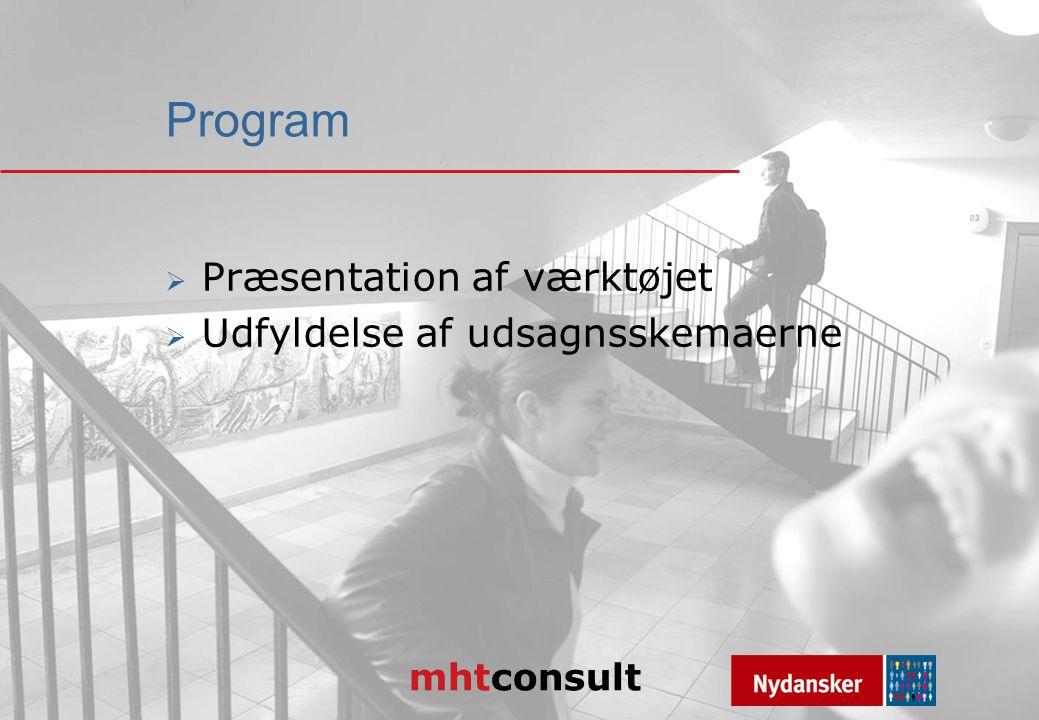 mhtconsult Program  Præsentation af værktøjet  Udfyldelse af udsagnsskemaerne