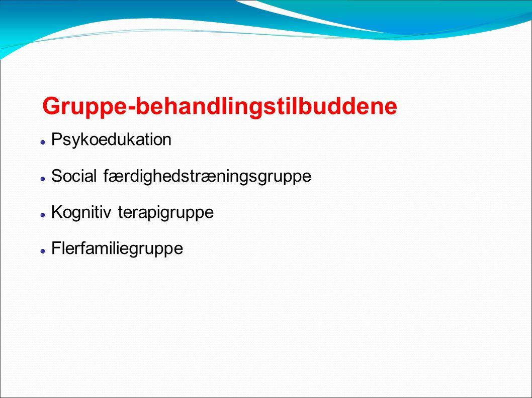 Gruppe-behandlingstilbuddene Psykoedukation Social færdighedstræningsgruppe Kognitiv terapigruppe Flerfamiliegruppe
