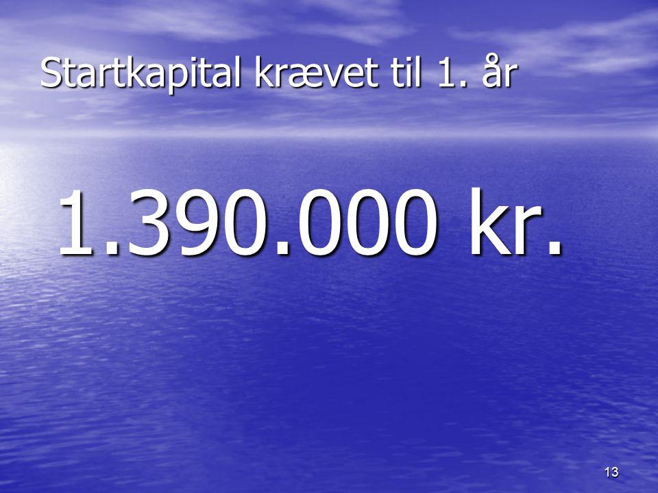 13 Startkapital krævet til 1. år 1.390.000 kr.