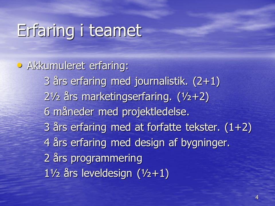 4 Erfaring i teamet Akkumuleret erfaring: Akkumuleret erfaring: 3 års erfaring med journalistik.