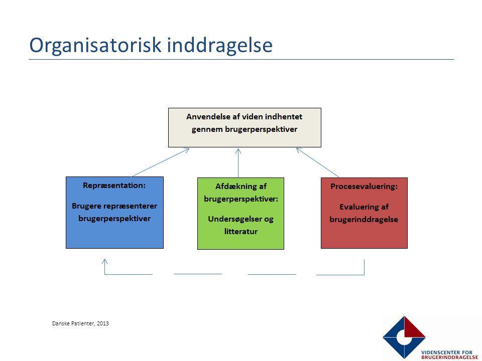 Organisatorisk inddragelse Danske Patienter, 2013